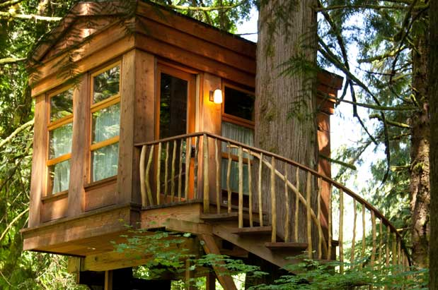 treehouse masters interior