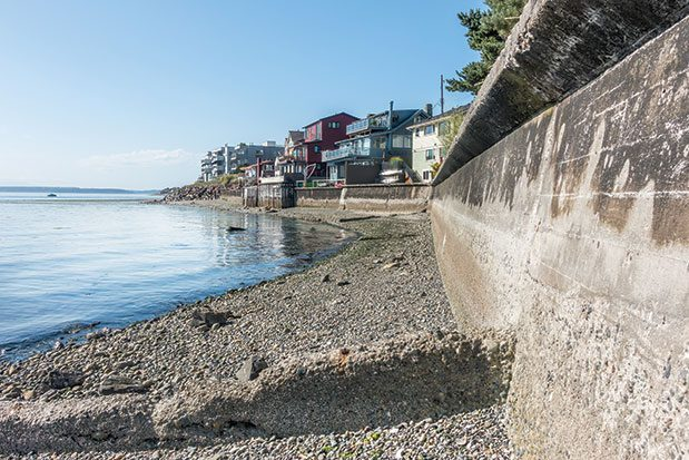 Bulkheads and other forms of 'armoring' line 92 percent of Seattle's marine shoreline. Removing these can help restore habitat for endangered species—but can also erode land. Not surprisingly, some homeowners are resisting