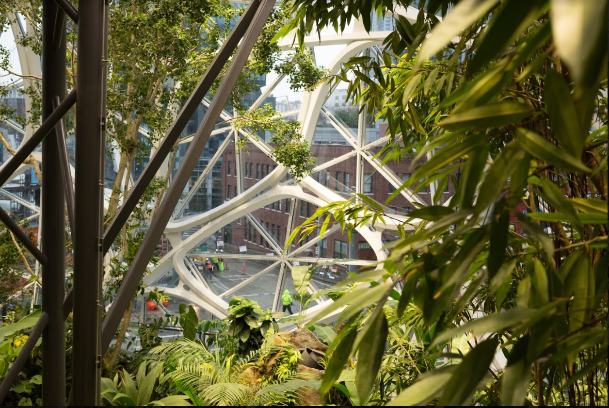 Amazon Opens The Spheres In Downtown Seattle With Help From Jeff Bezos And  Alexa